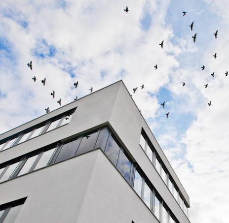 Das Gebäude von ICPDAS-EUROPE in Reutlingen